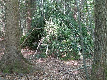 Haus des Waldes: Bildergalerie